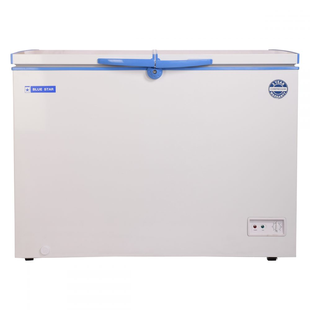 CHFDD300 - Blue Star 300 Liter Double Door Deep Freezer